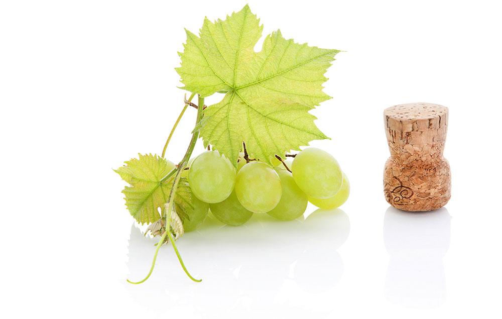 Druiven met kurk
